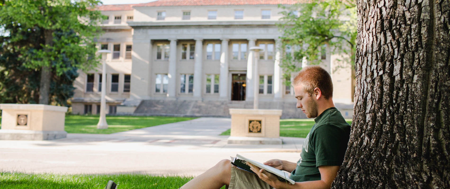 Colorado state university application essay prompt