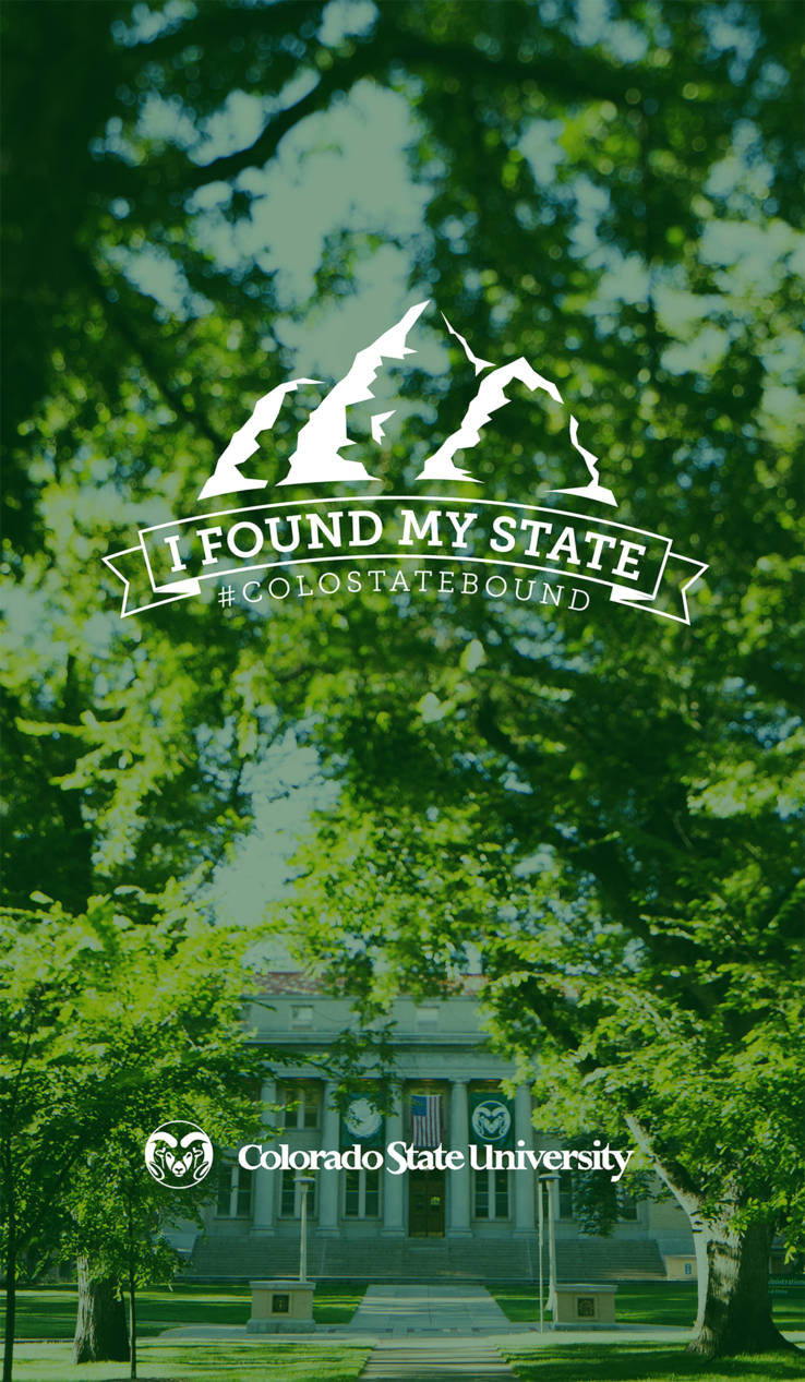 Colostatebound Admissions Colorado State University