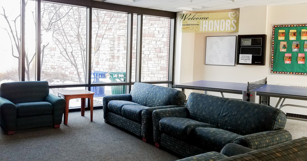 One of the many Honors hall community areas.