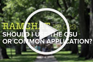Ramchat: Should I use the CSU or Common application?