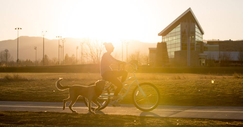 The biker's guide to Colorado State   Admissions   Colorado State University