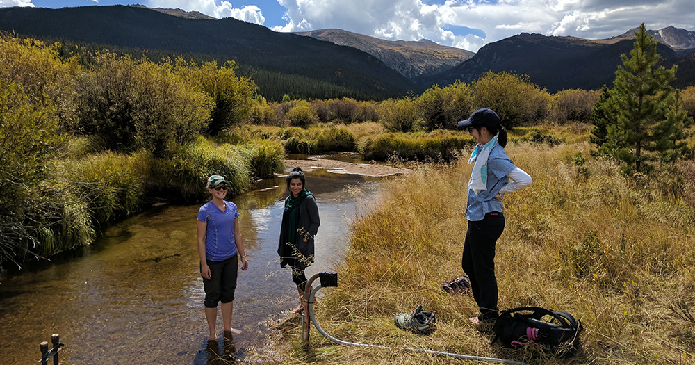 students and professor conduct research in a stream in the mountains